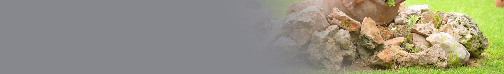 baner skałki