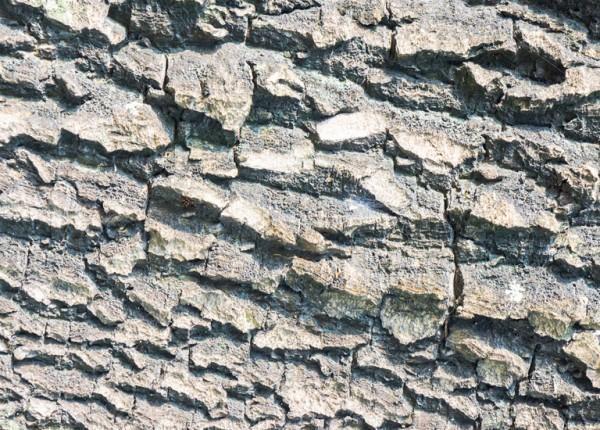 Kamień ozdobny 9